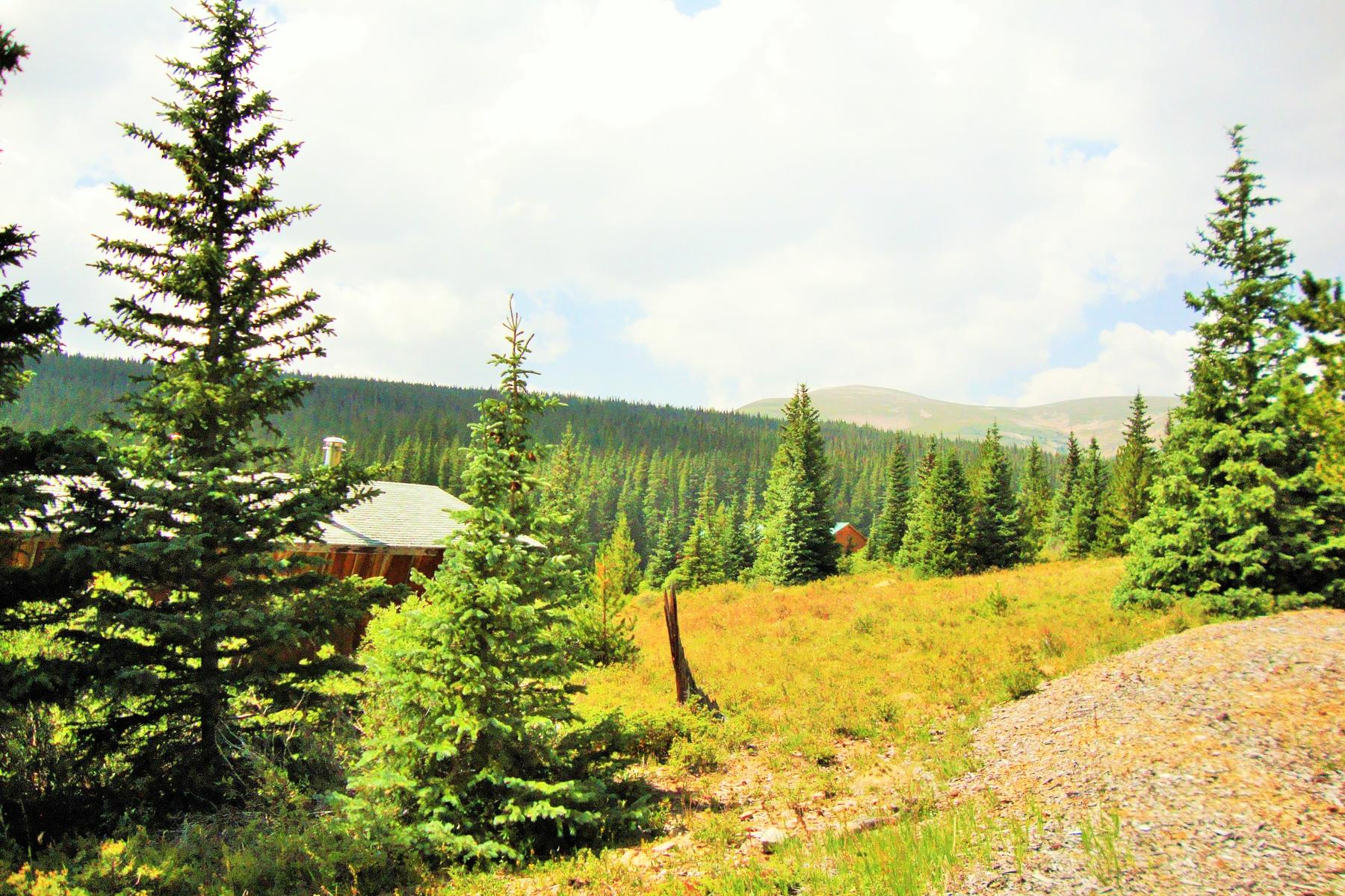 Land for Active at Streamside Mountain Acreage 156 Silk Sisters Place Fairplay, Colorado 80440 United States