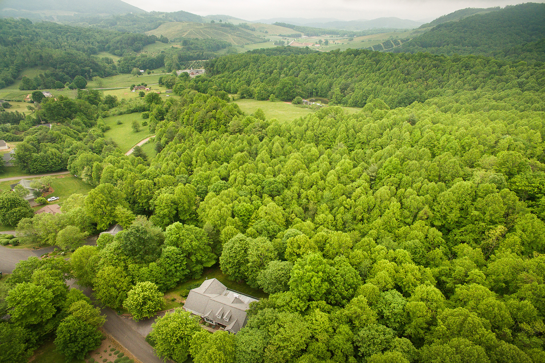Land for Active at BUCK MOUNTAIN ESTATES - WEST JEFFERSON Lot 78 White Tail Trl West Jefferson, North Carolina 28694 United States