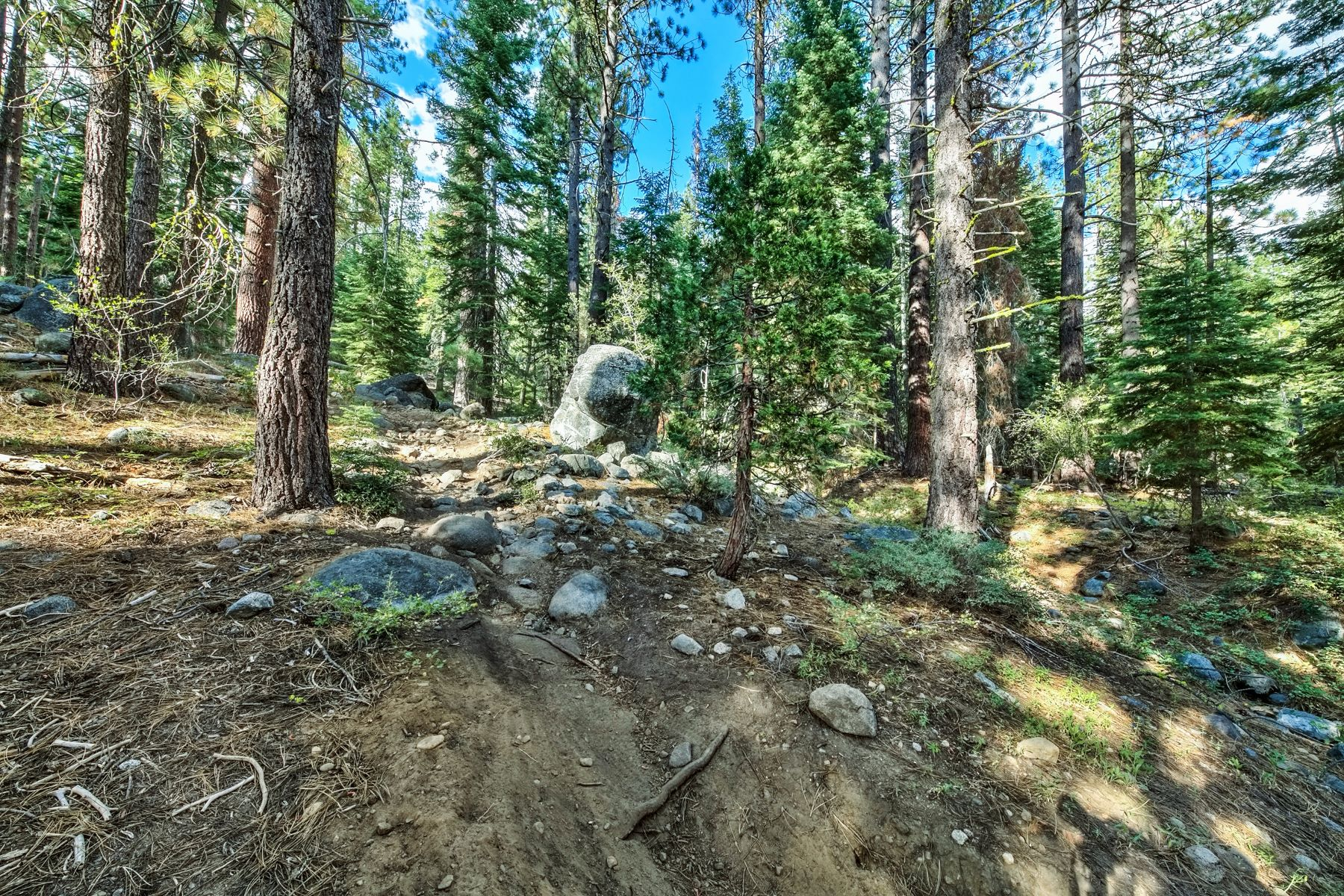 Additional photo for property listing at 10030 Donner Lake Rd., Truckee 10030  Donner Lake Rd. 特拉基, 加利福尼亚州 96161 美国
