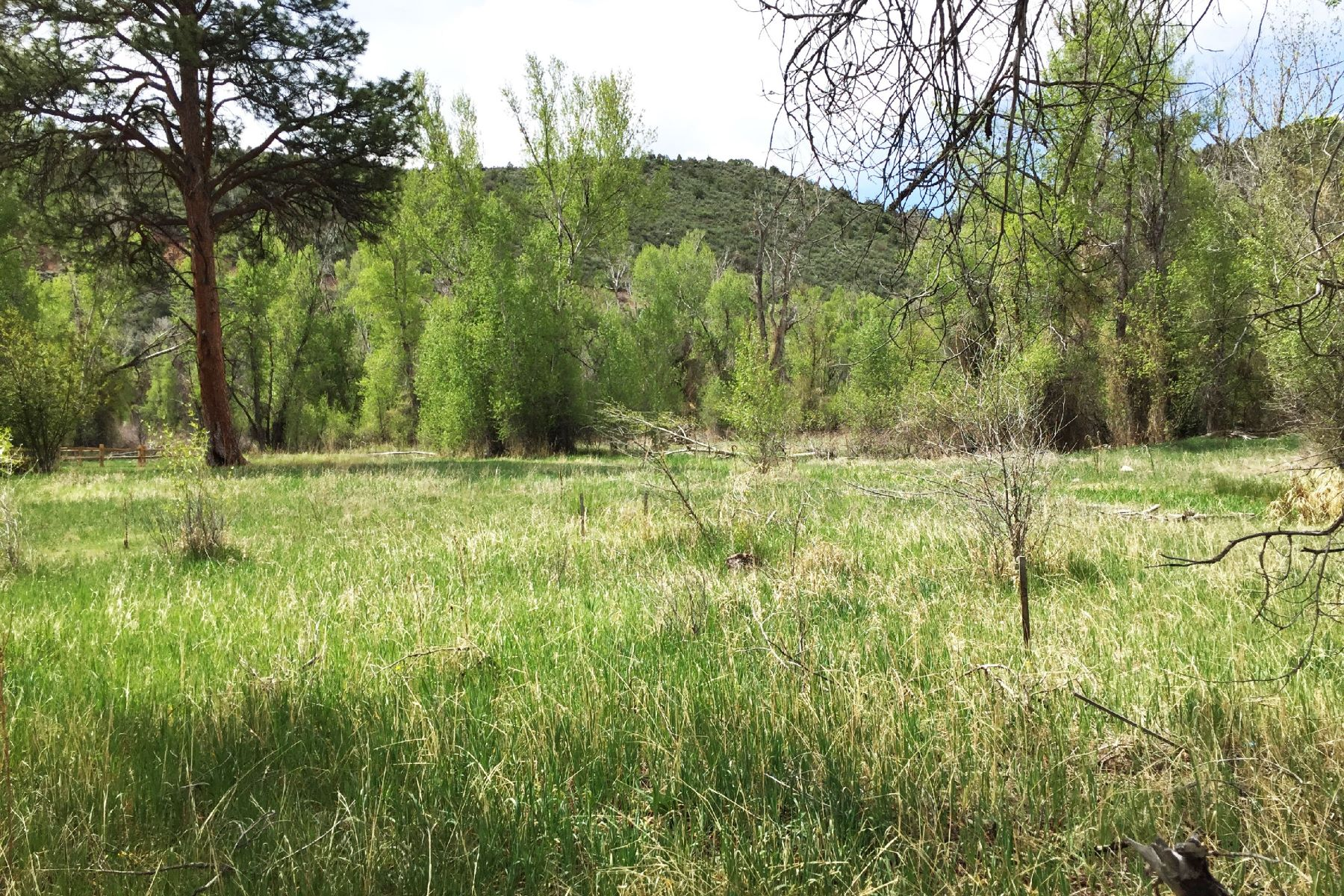 Land for Sale at Blue Creek Ranch 138 Bristlecone Drive Carbondale, Colorado, 81623 United States