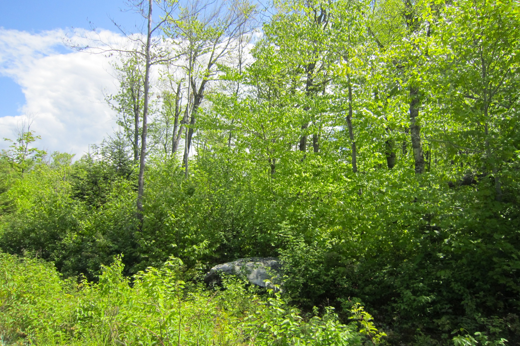 Land for Sale at Lots 2-6 Candeleros Court, Ludlow Lots 2-6 Candeleros Ct Ludlow, Vermont 05149 United States