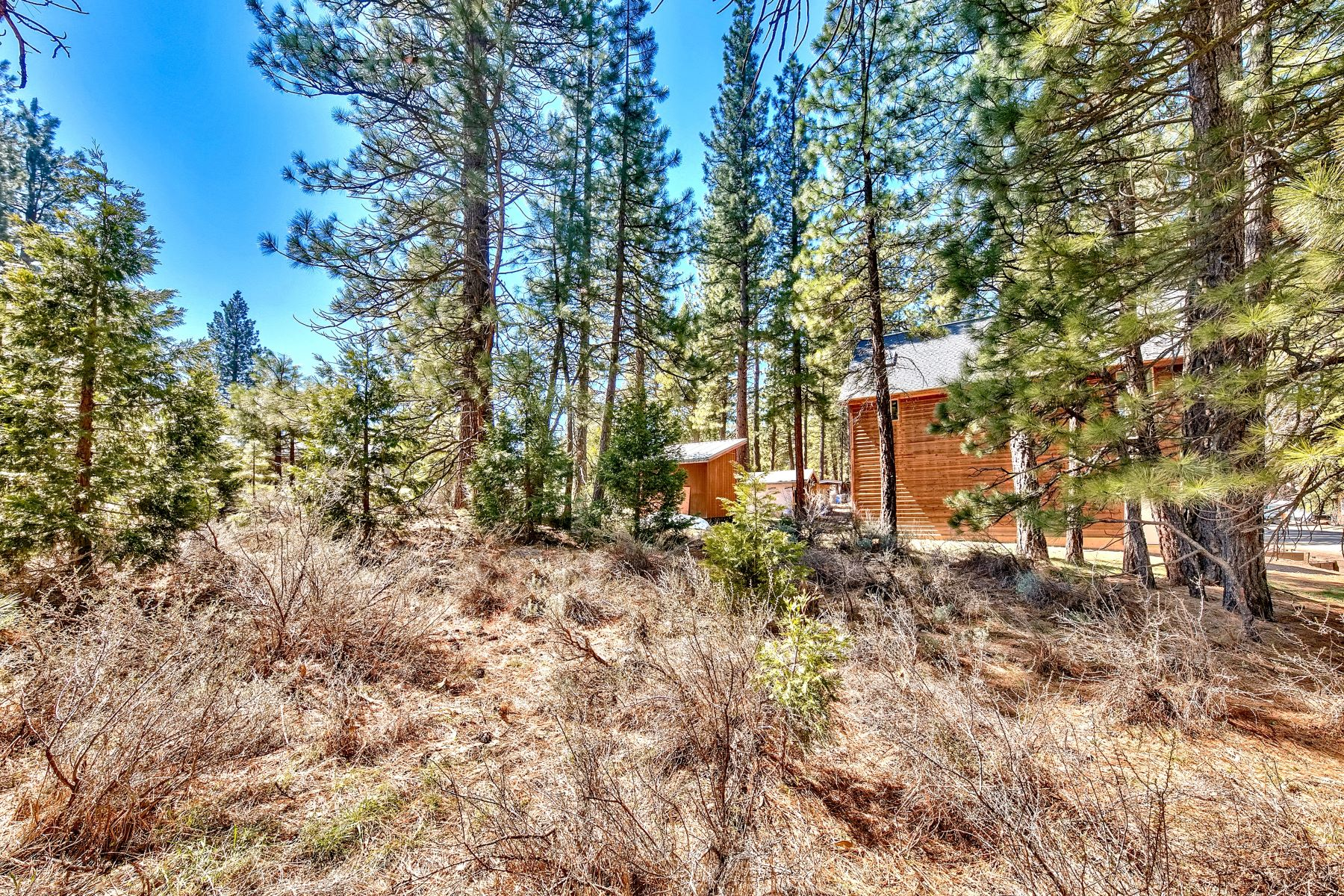Additional photo for property listing at Affordable lot in Calpine 117 Calpine Avenue Calpine, California 96124 Estados Unidos