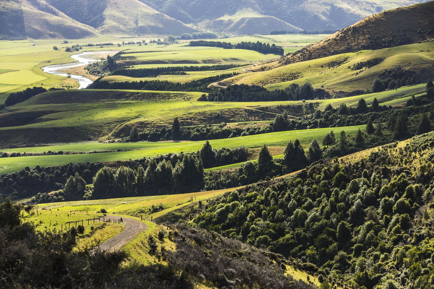 Farm / Ranch / Plantation for Sale at Glenlapa Station Other Southland, Southland New Zealand