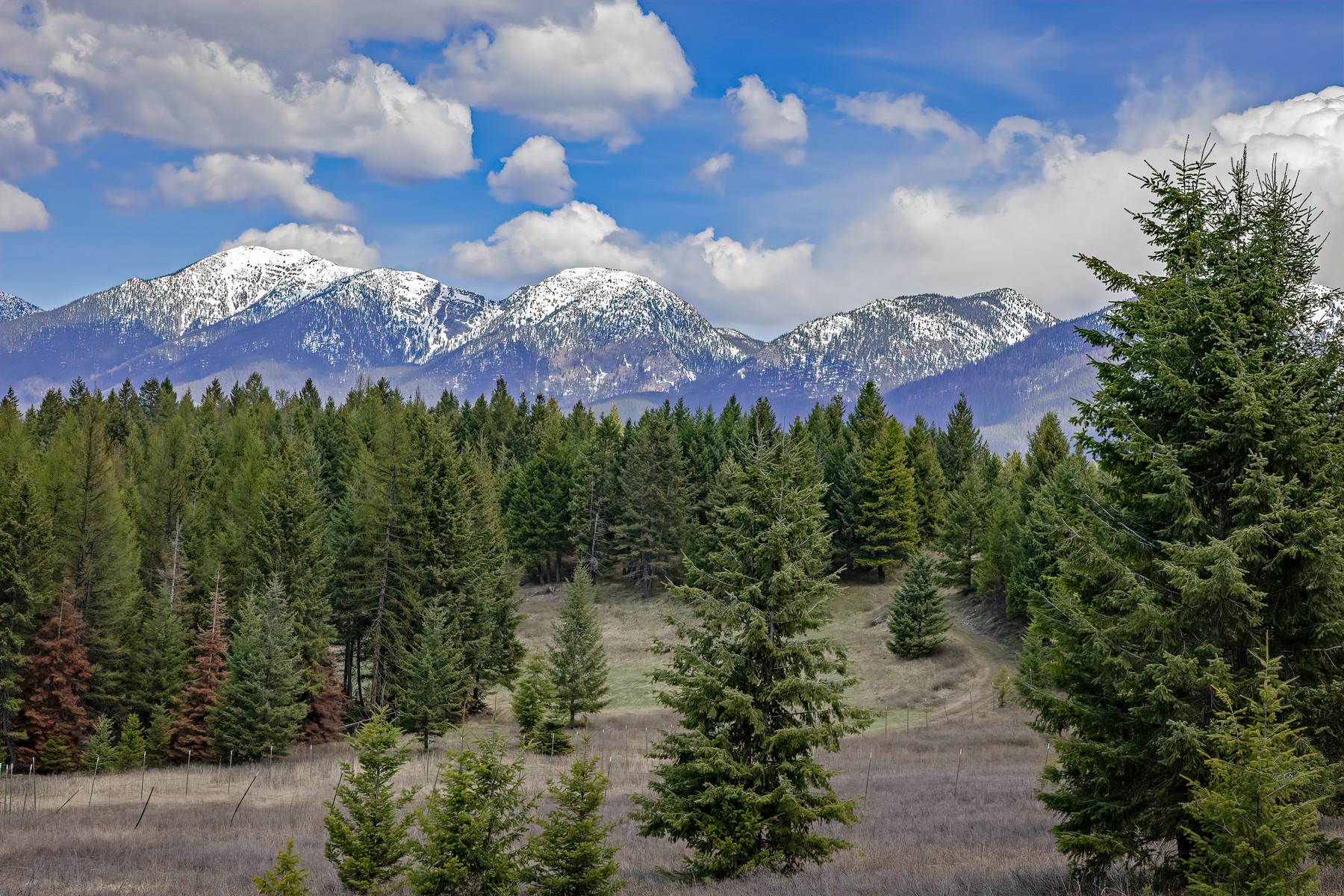 Land voor Verkoop op Kalispell, Montana 59901 Verenigde Staten