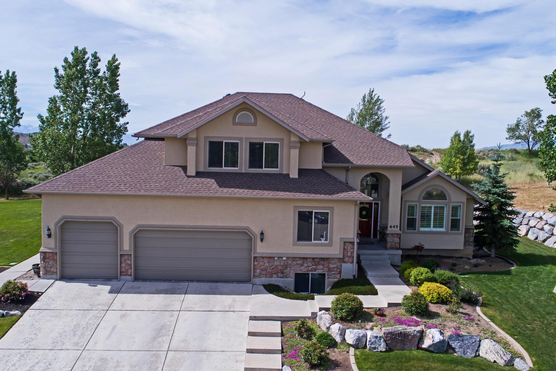 Maison unifamiliale pour l Vente à Great House, Great Lot, Great Price! 645 Sierra Cir Alpine, Utah, 84004 États-Unis