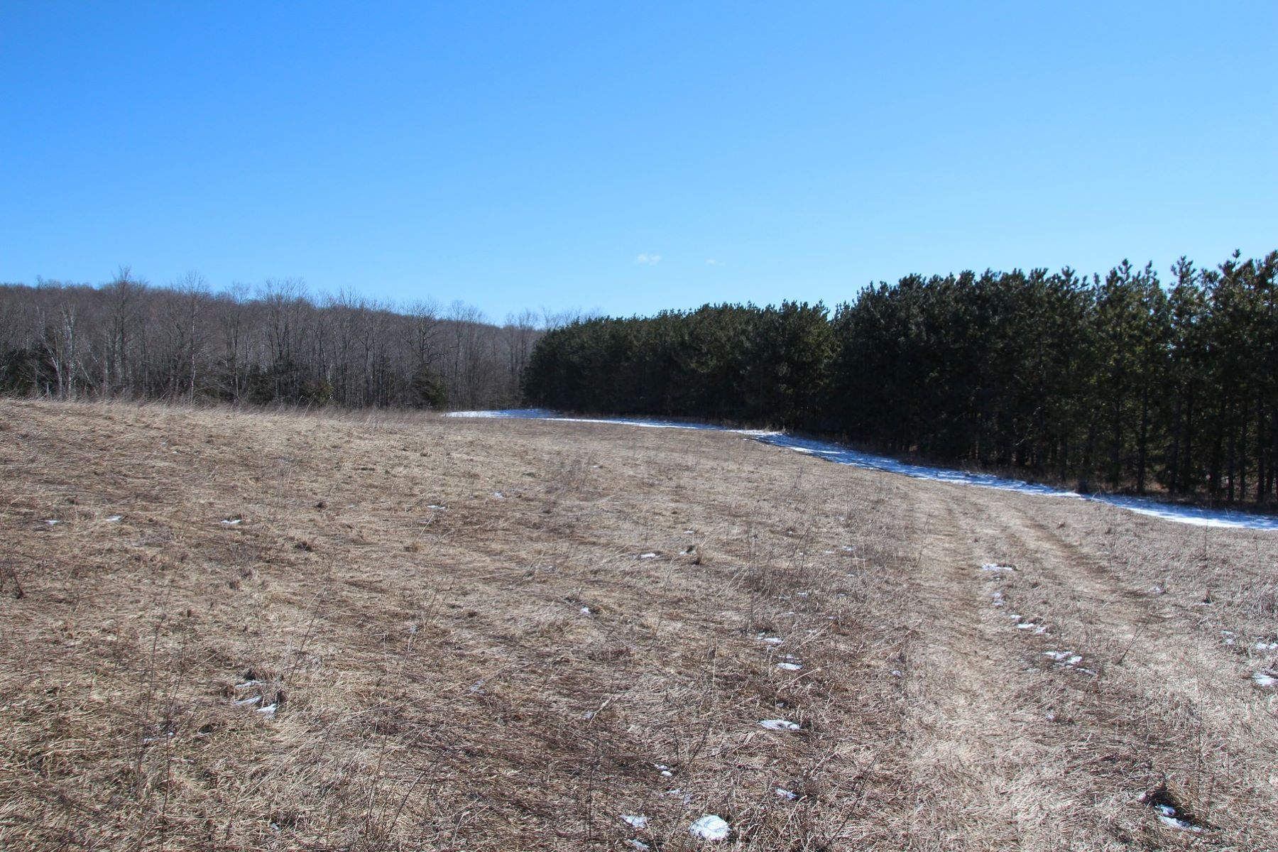 Land for Sale at Lake Grove Road Acreage Petoskey, Michigan 49770 United States