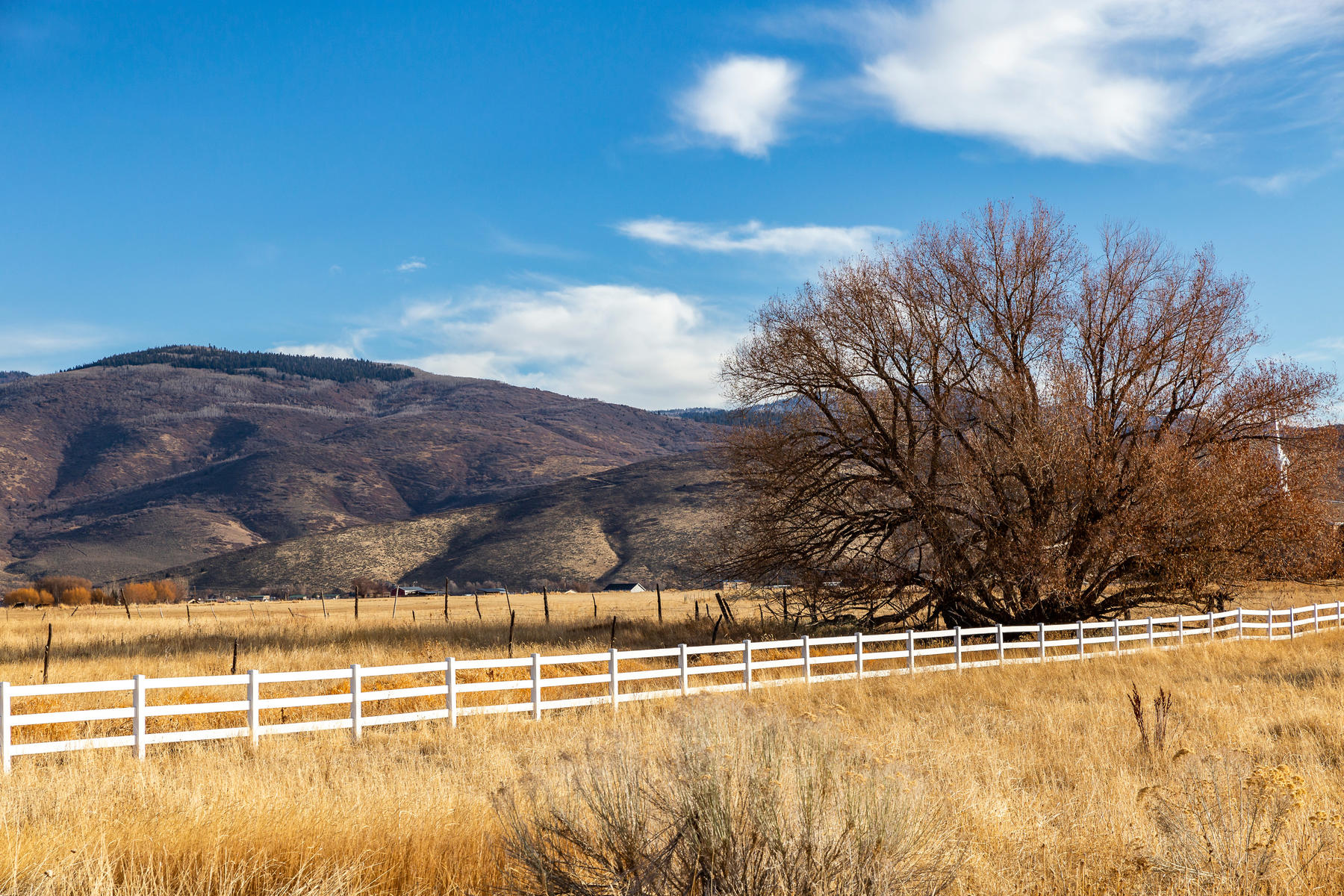 Land for Active at Horse Lovers Pony Up To Build Your Dream Home 574 Aspen Road Francis, Utah 84036 United States