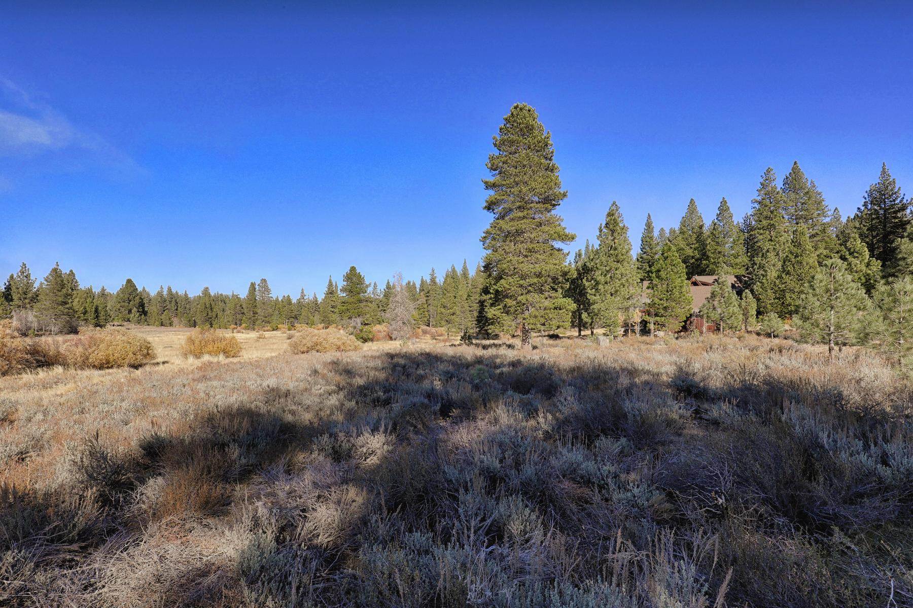 Additional photo for property listing at 13185 Snowshoe Thompson Cir, Truckee, Ca 96161 13185 Snowshoe Thompson Cir Truckee, California 96161 United States