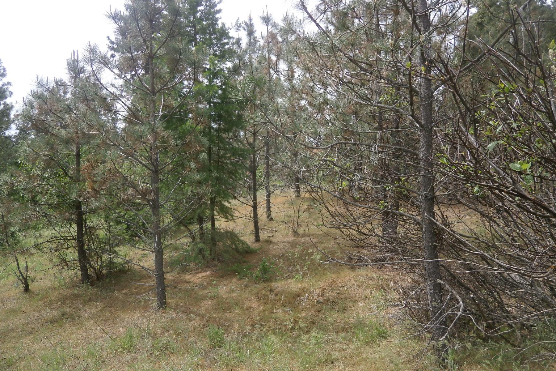 Arazi için Satış at NNA N Church Rd Lot 1 Rathdrum, Idaho, 83858 Amerika Birleşik Devletleri