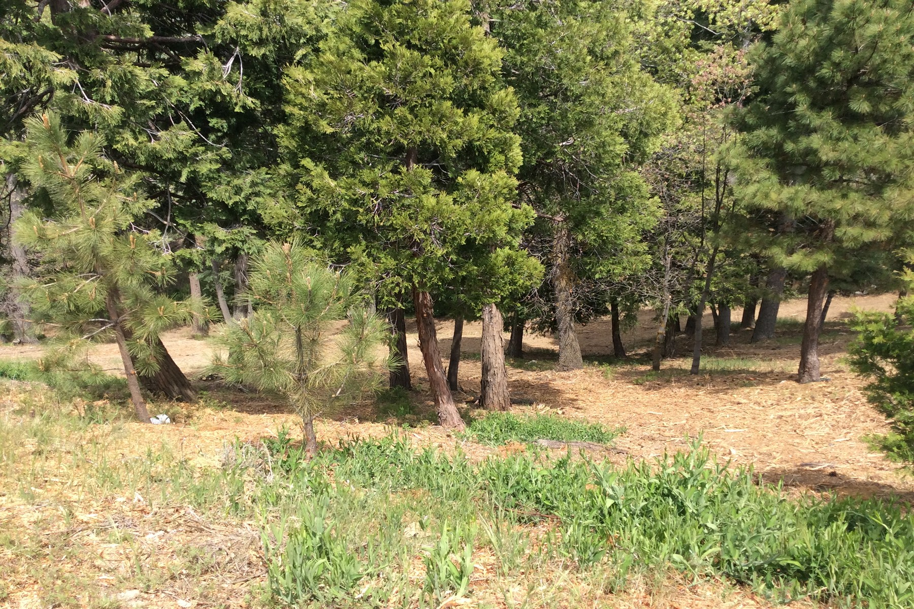 Land for Sale at 193 Mill Pond Lot 2 Road Lake Arrowhead, California, 92352 193 Mill Pond Lot 2 Road Lake Arrowhead, California 92352 United States