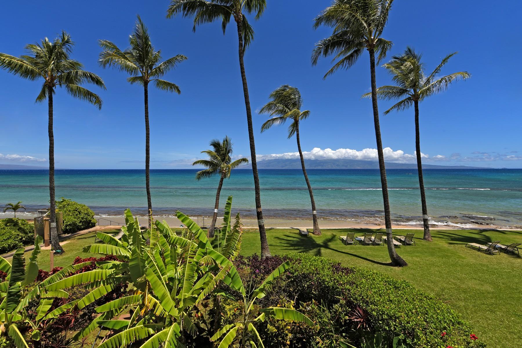 Nhà chung cư vì Bán tại Remodeled Oceanfront Condominium in Honokowai 3601 Lower Honoapiilani Road, Paki Maui 208, Honokowai, Hawaii, 96761 Hoa Kỳ
