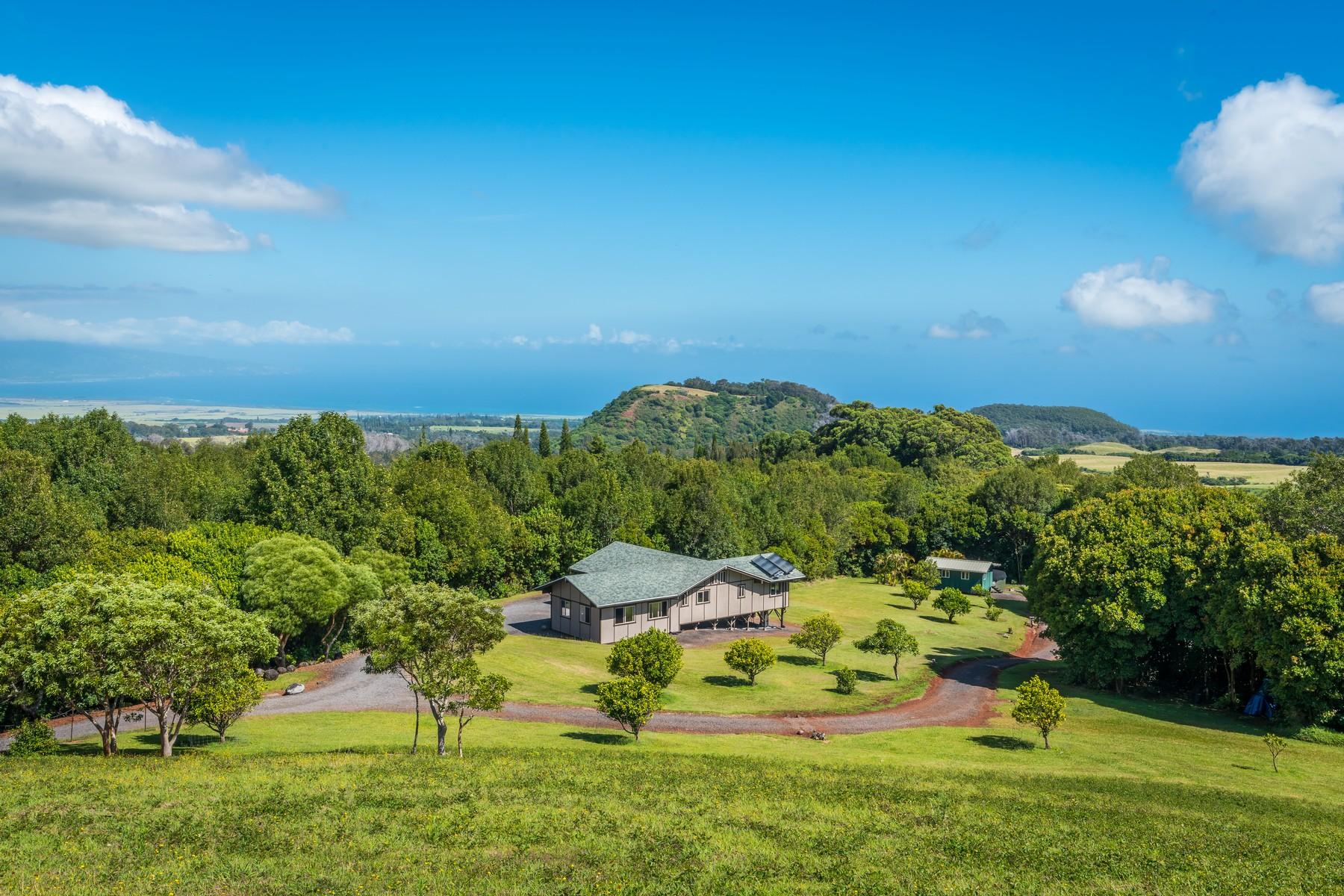 一戸建て のために 売買 アット Charming 2-Bedroom Cottage on 10 Acres 275 Kahakapao Makawao, ハワイ 96768 アメリカ合衆国
