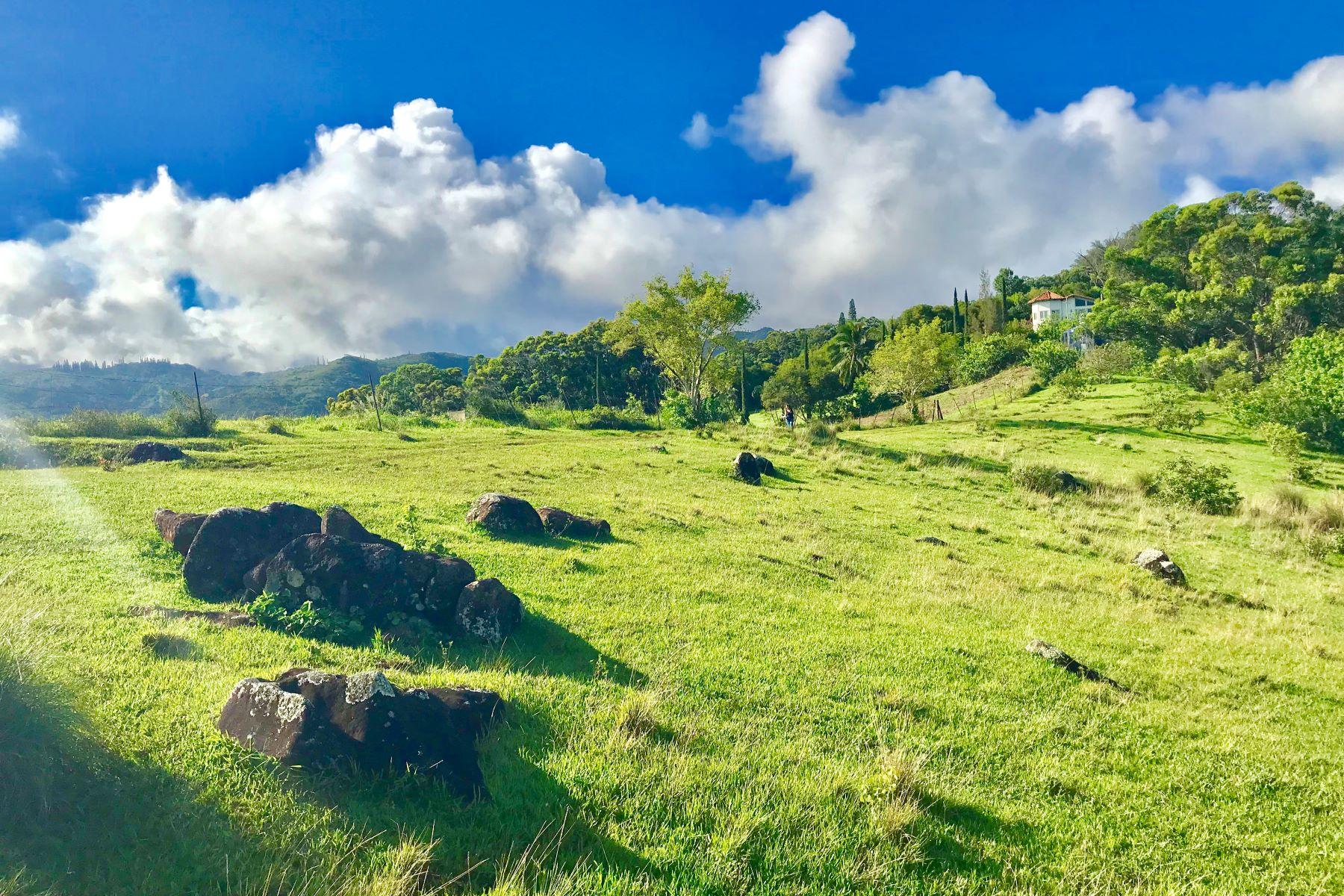土地,用地 为 销售 在 Akemama Road Akemama Road #3 卡拉黑奥, 夏威夷 96741 美国