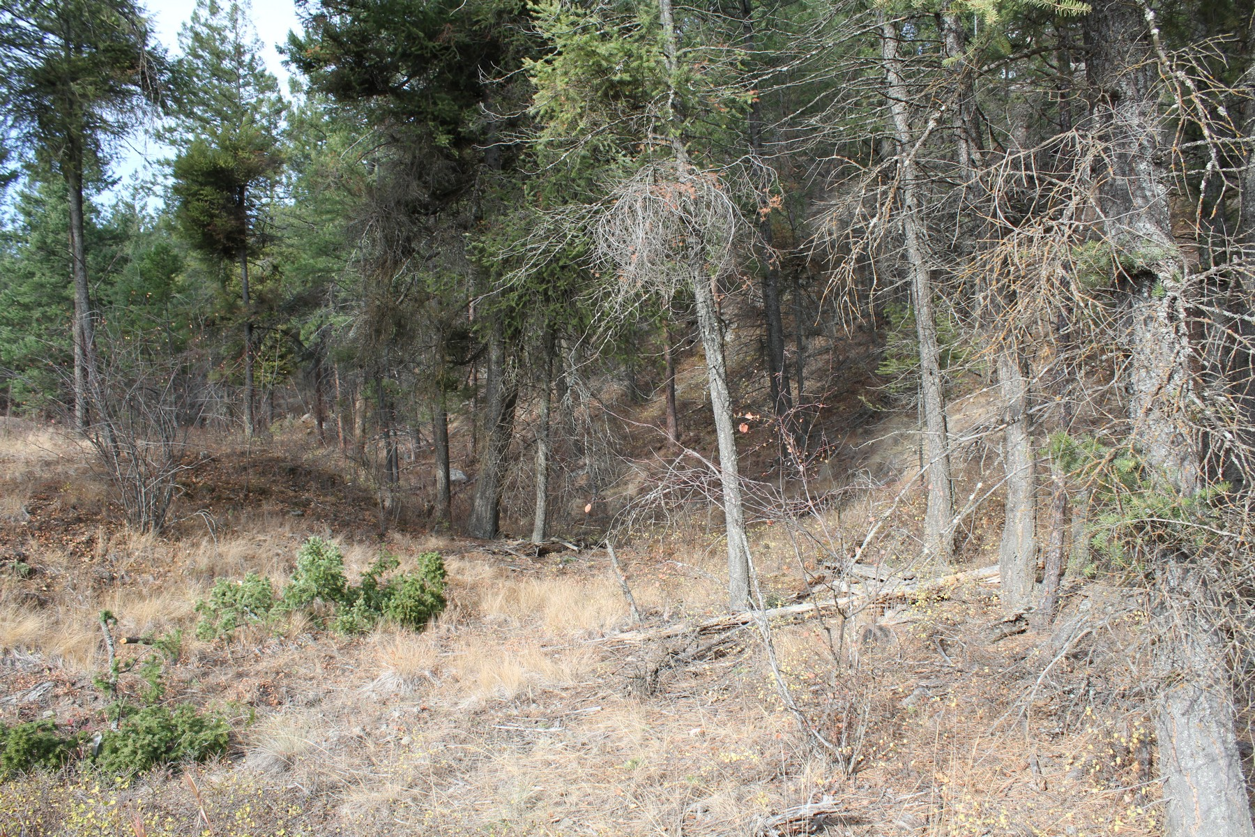 Land for Sale at 416 S 416 S Eighty Drive , Somers, MT 59932 Somers, Montana 59932 United States