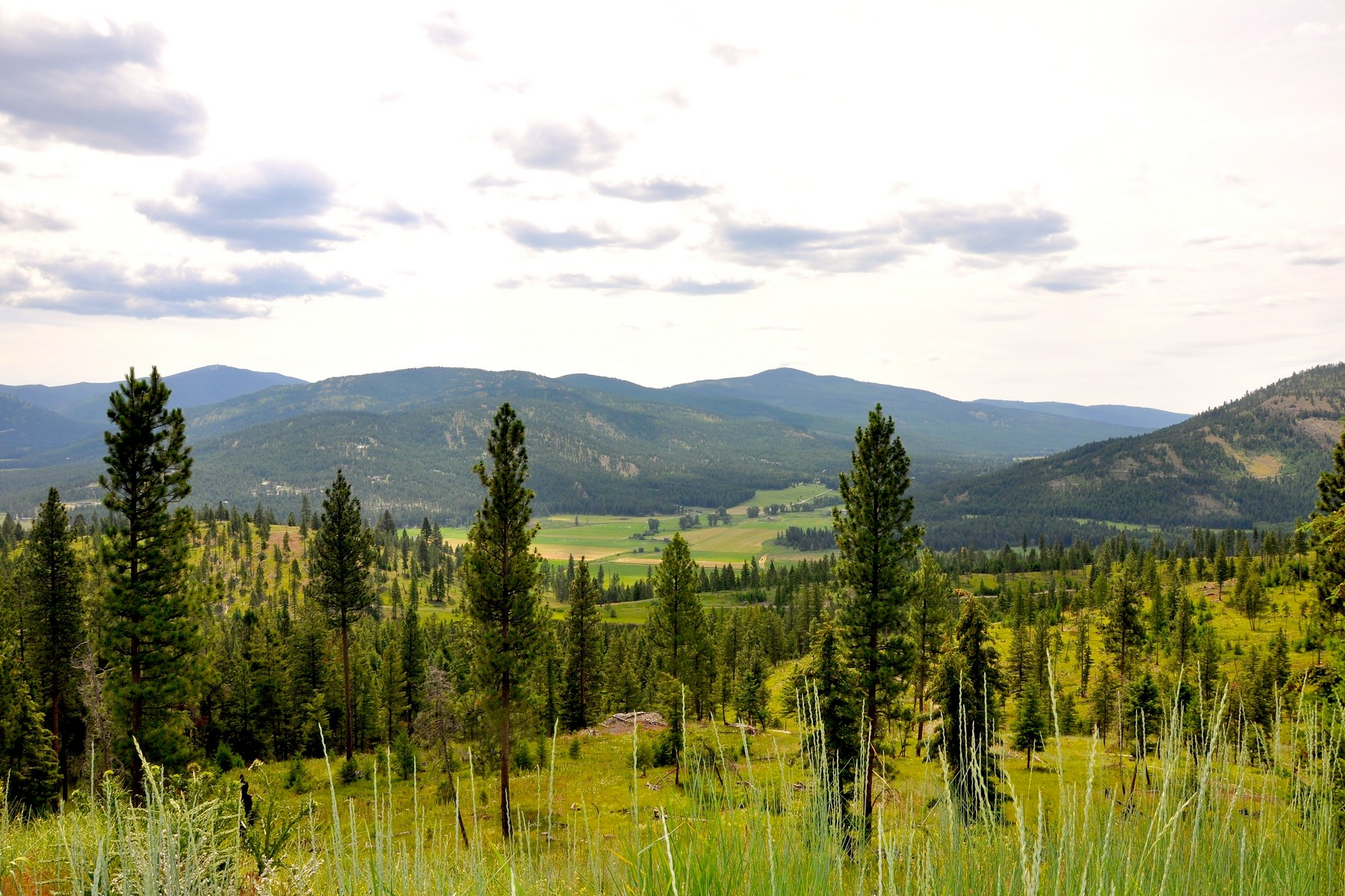 Land for Sale at Nhn Us Hwy 2 W, Jackson 13, Kila, MT 59920 Nhn Us Hwy 2 W Jackson 13 Kila, Montana 59920 United States