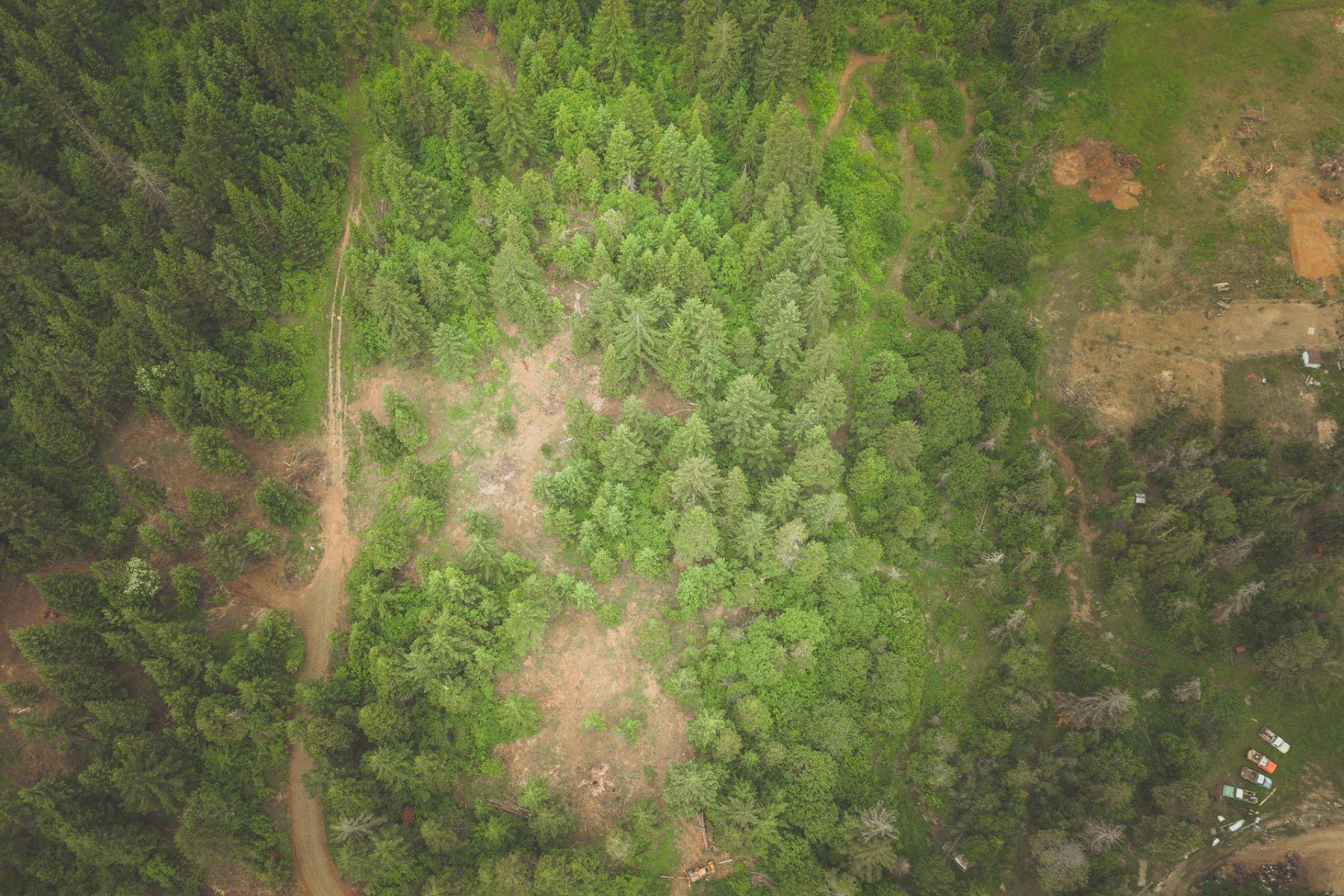 Land for Sale at Lot 300 Kida Road White Salmon, Washington 98672 United States