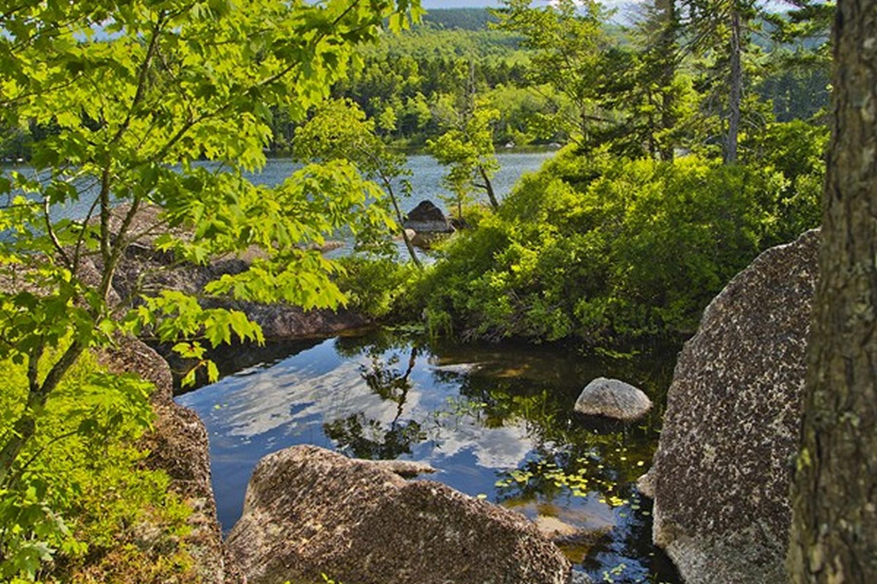 Terrain pour l Vente à Alamanda Drive 0 Alamanda Drive Dedham, Maine, 04429 États-Unis