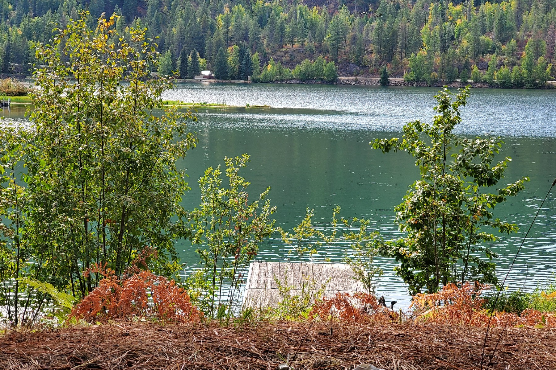 Land for Active at Pend Oreille River Waterfront Lot NNA Gosling Point Priest River, Idaho 83856 United States