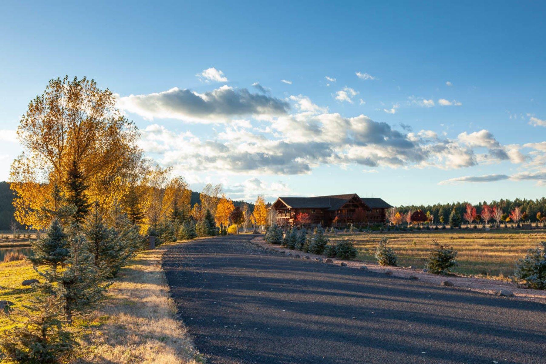 Land for Sale at Foxboro Ranch Estates 195 W FOXBORO RD 20 Munds Park, Arizona 86017 United States