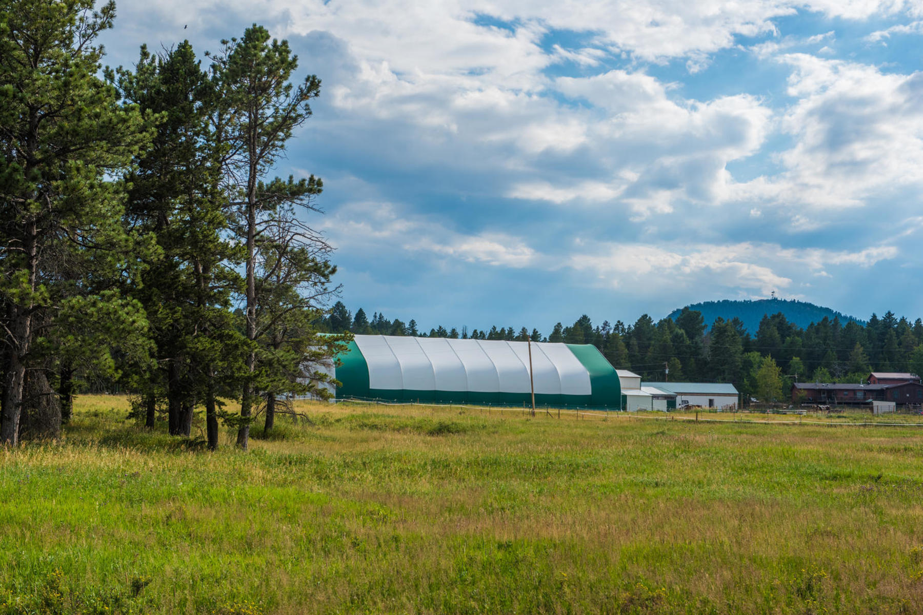 Additional photo for property listing at Dream Horse Property with 10.5 Pristine Acres of Flat Pasture 12040 South Ridge Road Conifer, Colorado 80433 United States