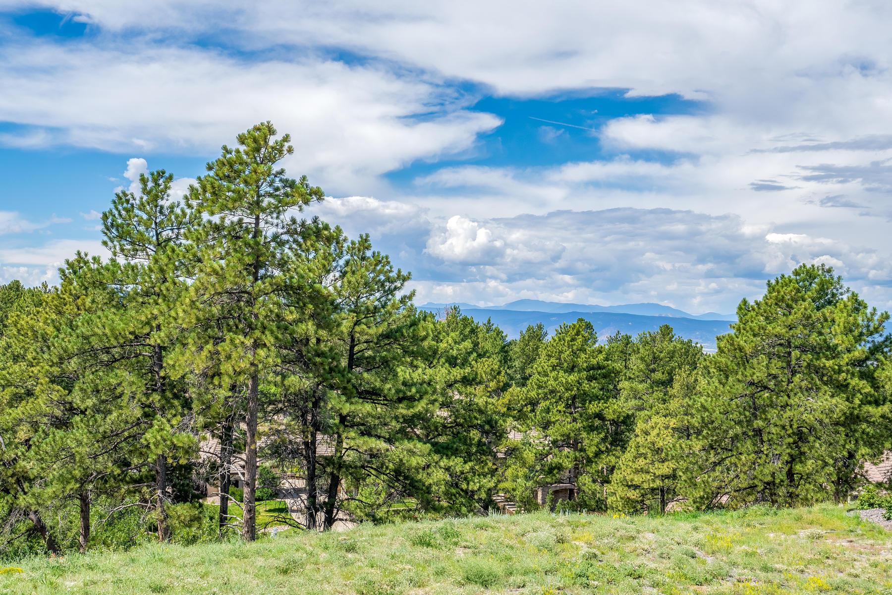 Property for Active at Avenida Del Sol Lot 1839 Avenida Del Sol Castle Rock, Colorado 80104 United States