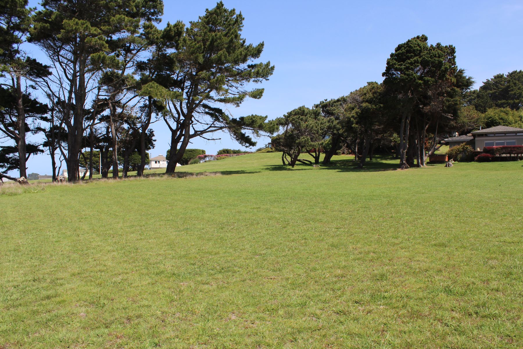Additional photo for property listing at Mendocino Ocean Views 14250 Polaris Circle Mendocino, 加利福尼亚州 95460 美国