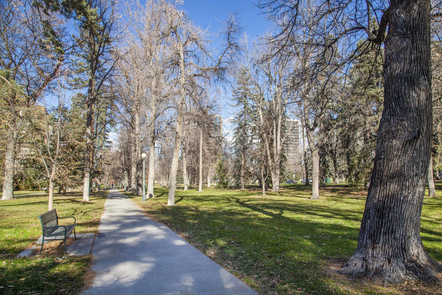 Additional photo for property listing at 1050 Clarkson Street 1050 Clarkson Street Denver, Colorado 80218 United States