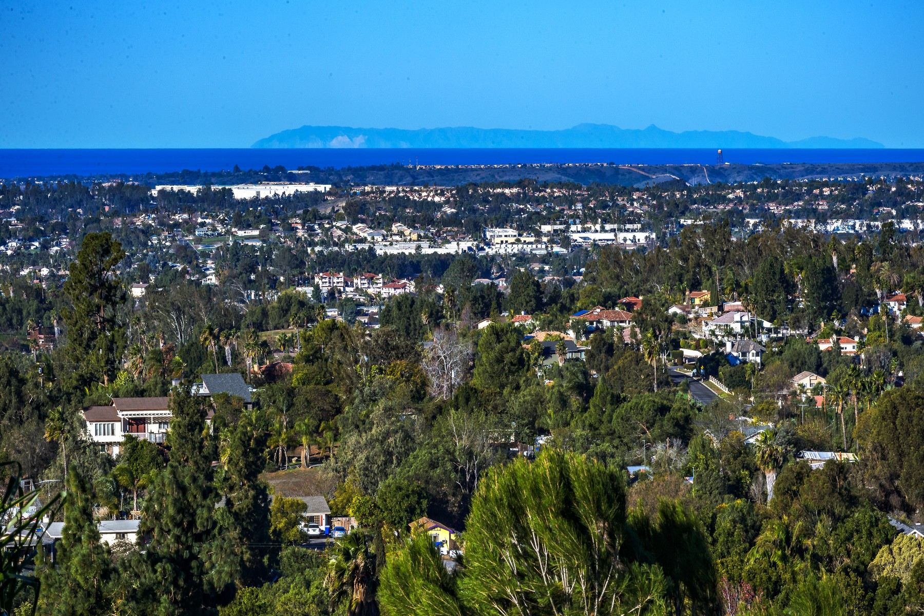 Single Family Home for Active at 2465 Catalina Avenue Vista, California 92084 United States