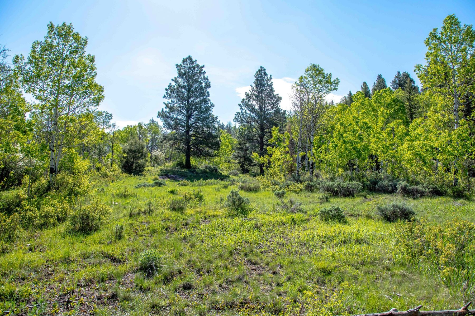 Land for Sale at Mountain Retreat Lot TBD County Road 17 Meeker, Colorado 81641 United States