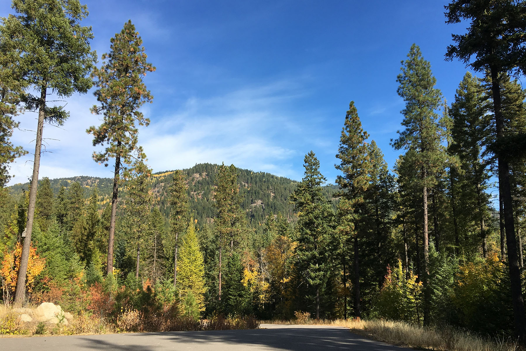 Additional photo for property listing at Build Your Dream on Over an Acre With Views 25 Mariposa Ct Sandpoint, Idaho 83864 United States