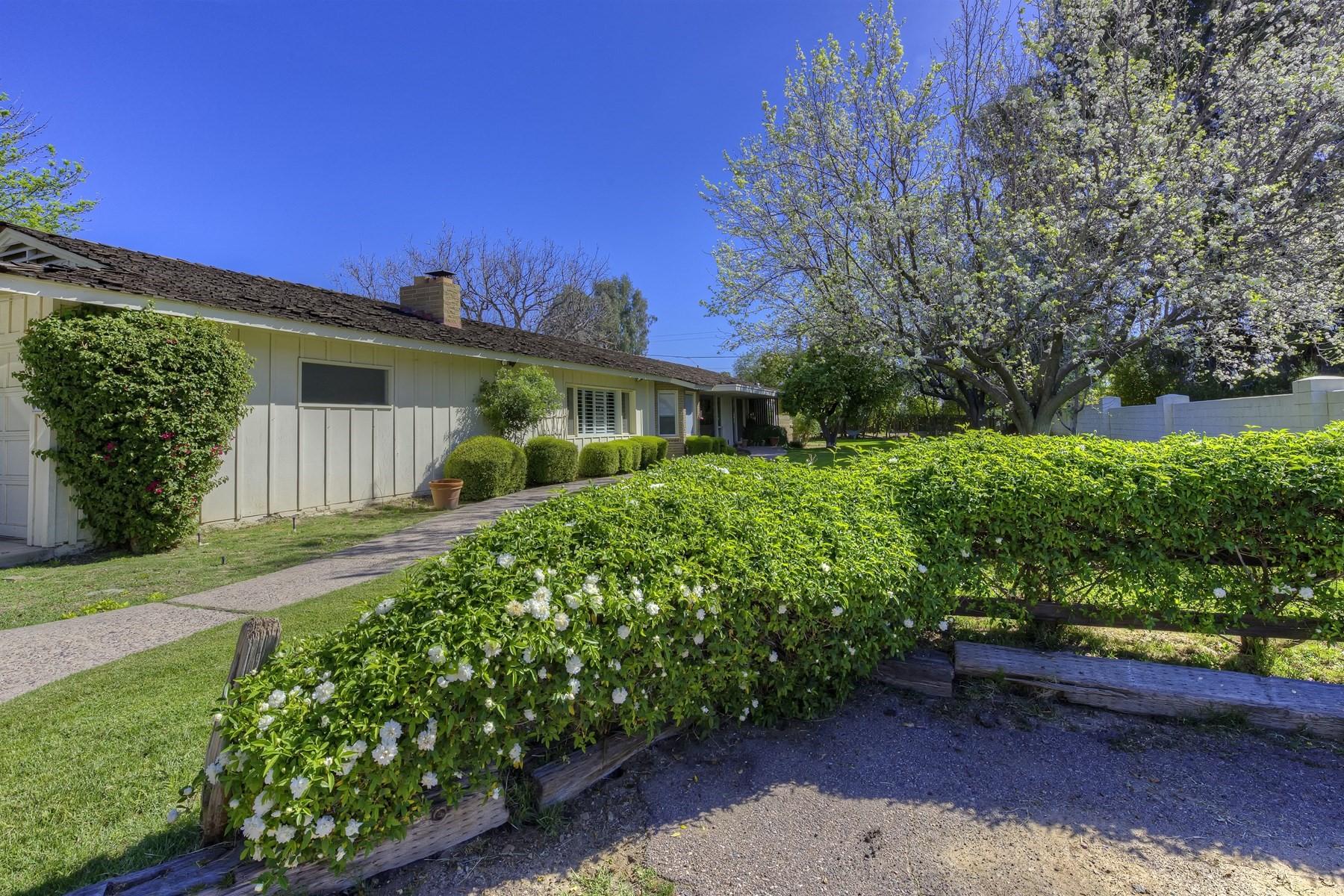一戸建て のために 売買 アット Stunning level home in the North Central Corridor of Phoenix 350 E Northview Ave Phoenix, アリゾナ, 85020 アメリカ合衆国