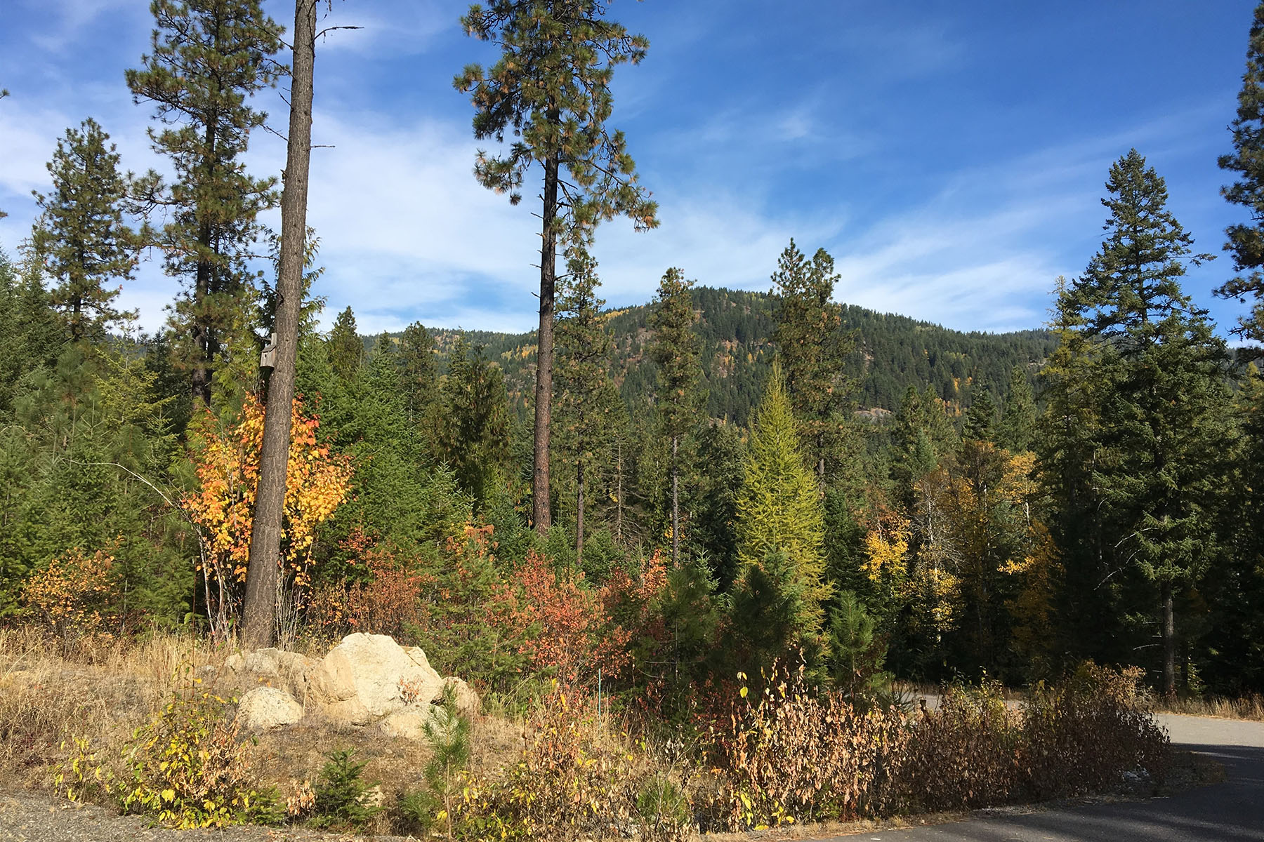 Additional photo for property listing at Build your dream at Balsam Heights! 211 Balsam Dr Sandpoint, Idaho 83864 United States
