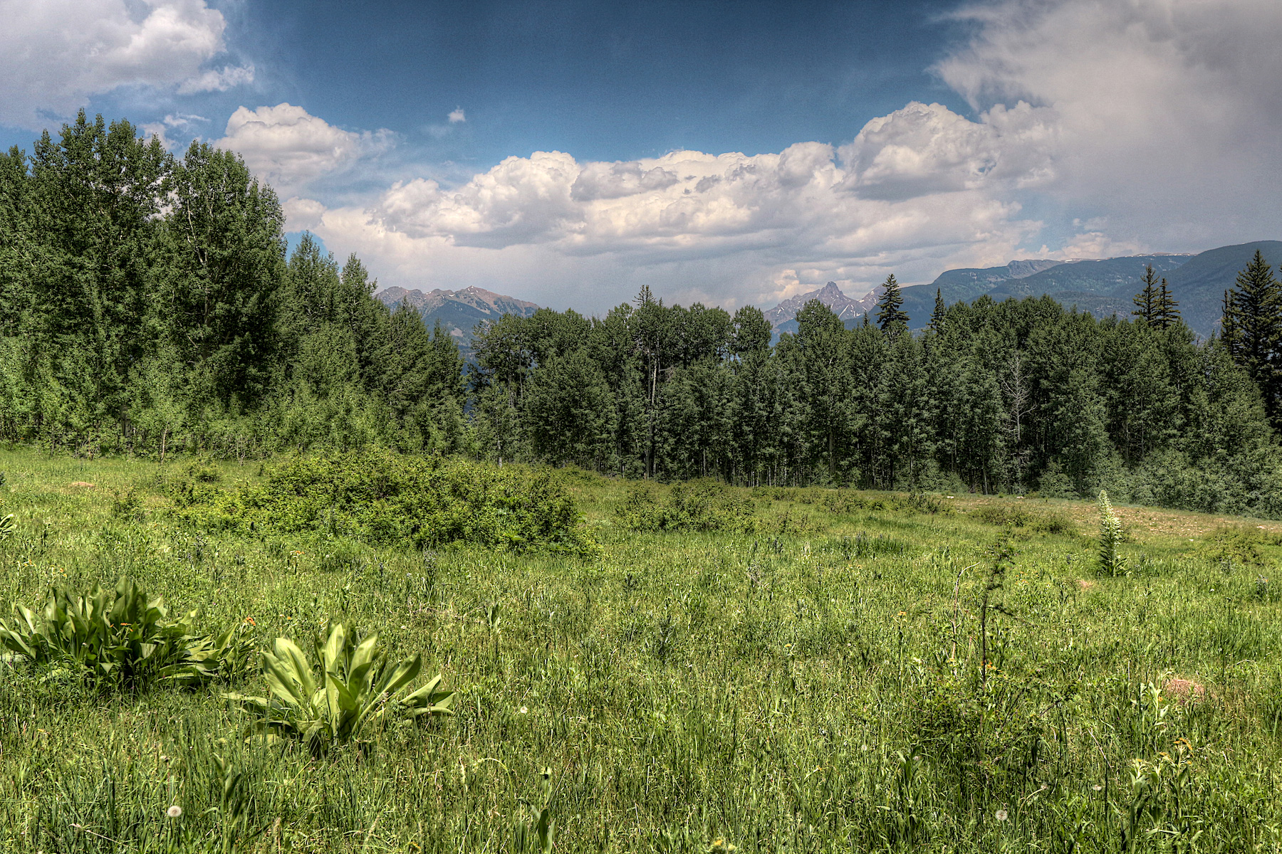 Land for Sale at 311 Wilshire Drive 311 Wilshire Drive Durango, Colorado 81301 United States