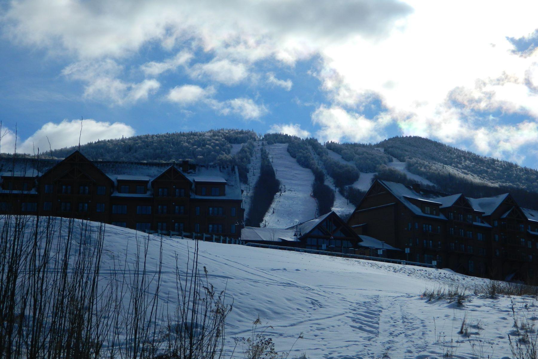 Land for Sale at SF #10 Alpine Lane, Burke SF #10 Alpine Ln Burke, Vermont 05832 United States