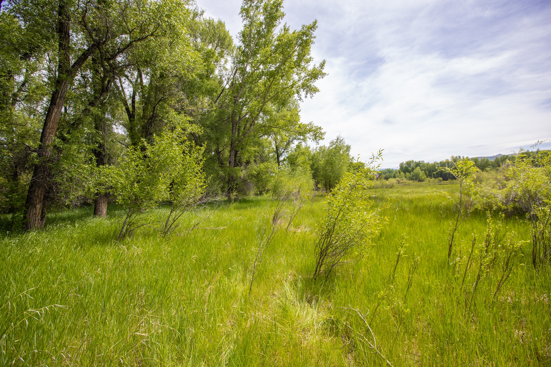 Land for Active at Exclusive Home Site with Fishing Rights 117 Caddis Fly Lane Gunnison, Colorado 81230 United States