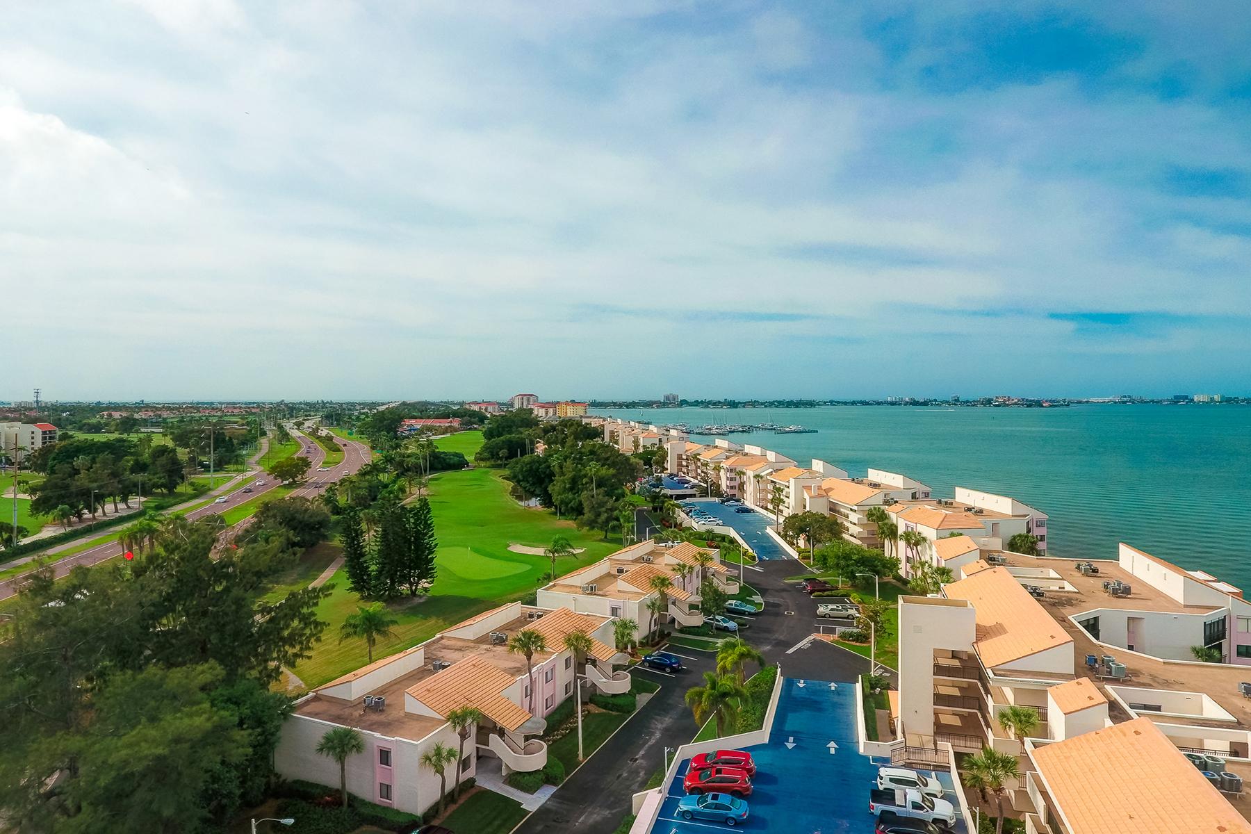 condominiums for Active at ST. PETERSBURG 5510 La Puerta Del Sol Blvd S , 134 St. Petersburg, Florida 33715 United States