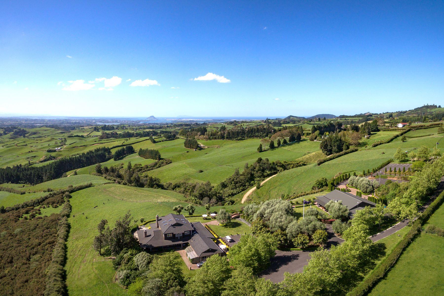 Other Residential Homes pour l Vente à 1004 Ohauiti Road, Ohauiti Tauranga, Bay Of Plenty 3173 Nouvelle-Zélande