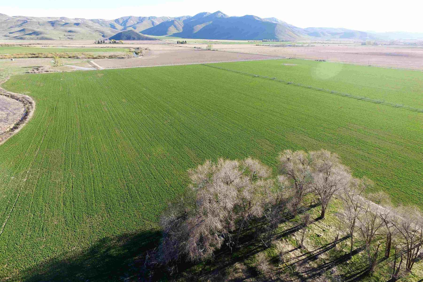 Additional photo for property listing at Willow Bend 402 N Picabo Road Picabo, Idaho 83348 Estados Unidos