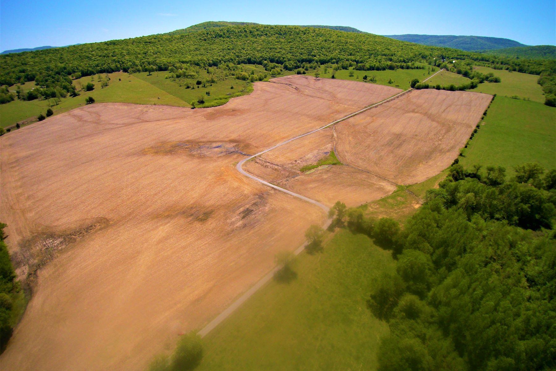 Terrain pour l Vente à Elora, Tennessee 37328 États-Unis