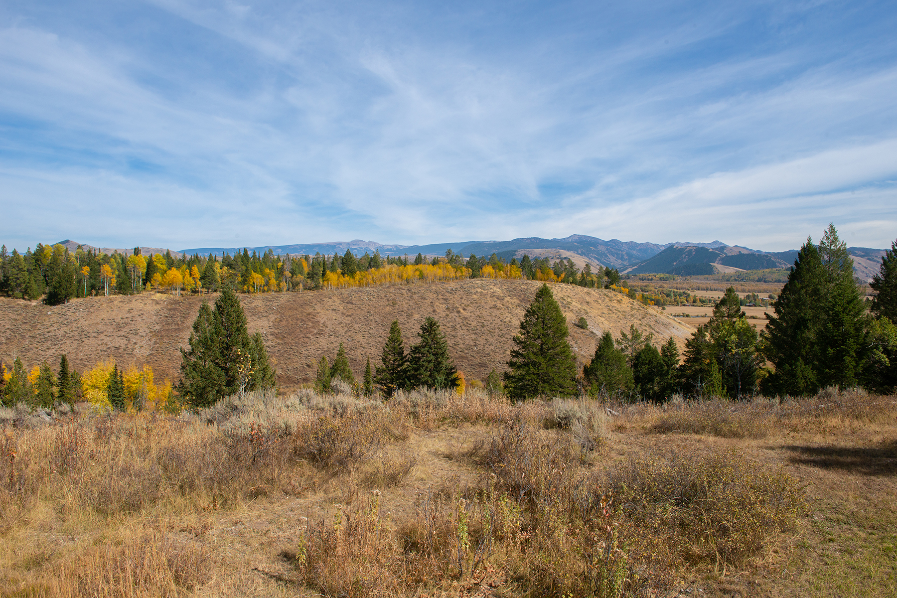 Land for Sale at 93 acres in Wilson, Wyoming 6785/6125 W GILL HUFF & HECK OF A HILL ROAD Wilson, Wyoming 83014 United States