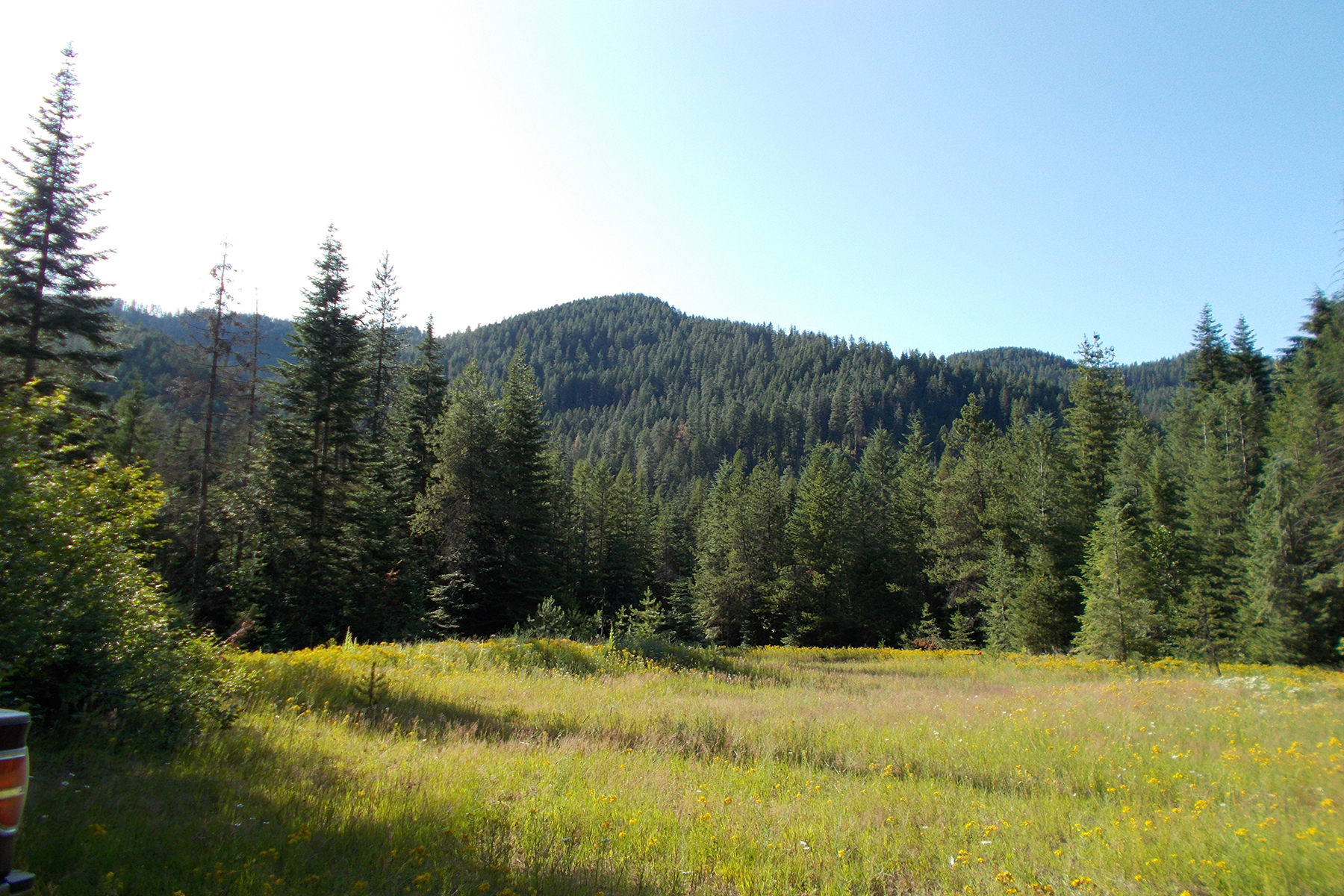 أراضي للـ Sale في 45 Acres Surrounded by National Forest 45 Forest Service Road 278, Bayview, Idaho 83803 United States