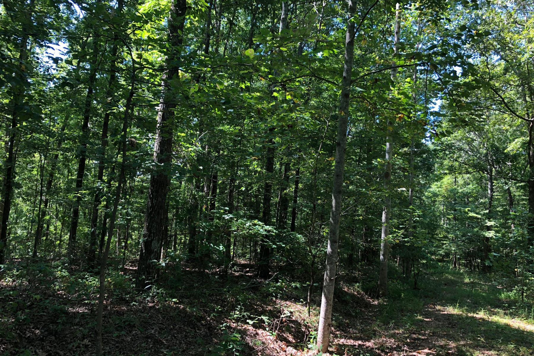 Land for Active at 0 Ridgetop Drive Bon Aqua, Tennessee 37025 United States