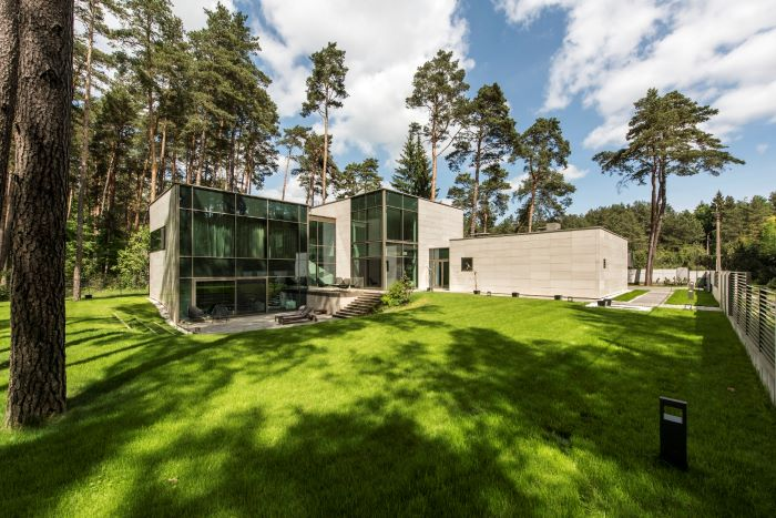 Modern House Surrounded By Pines