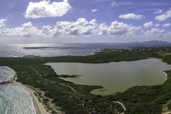 Savannah Bay Land