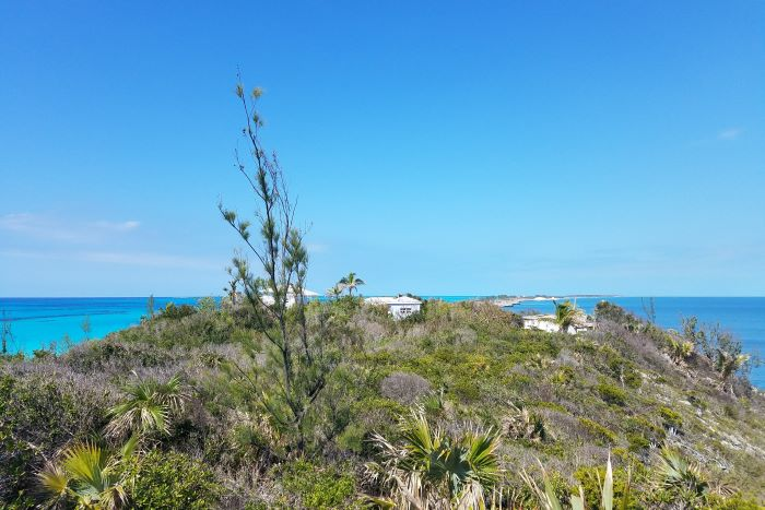 Rose Island Lot 46
