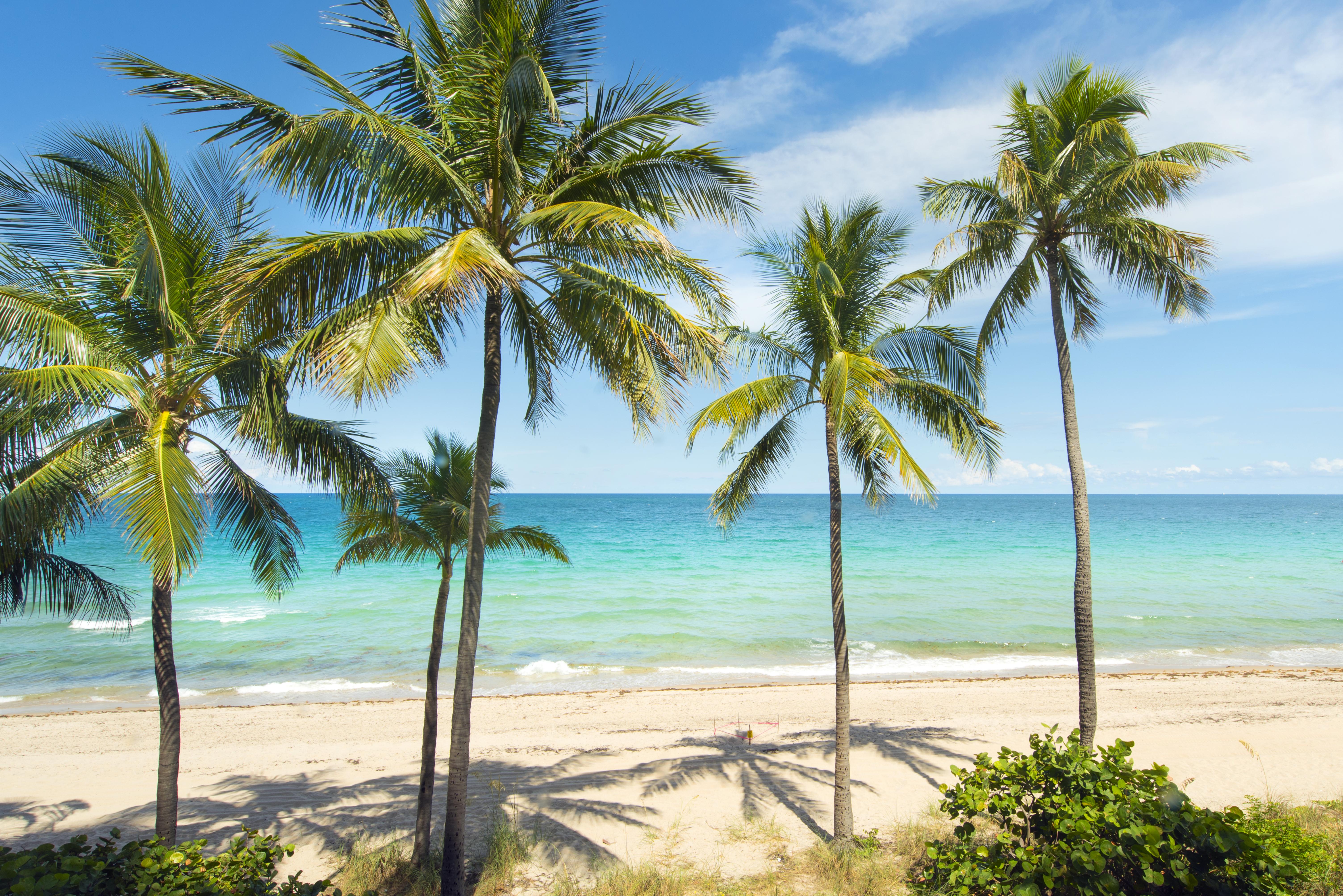 Casa Unifamiliar Adosada por un Venta en 2160 N Ocean Bl #3 2160 N Ocean Bl 3 Fort Lauderdale, Florida, 33305 Estados Unidos