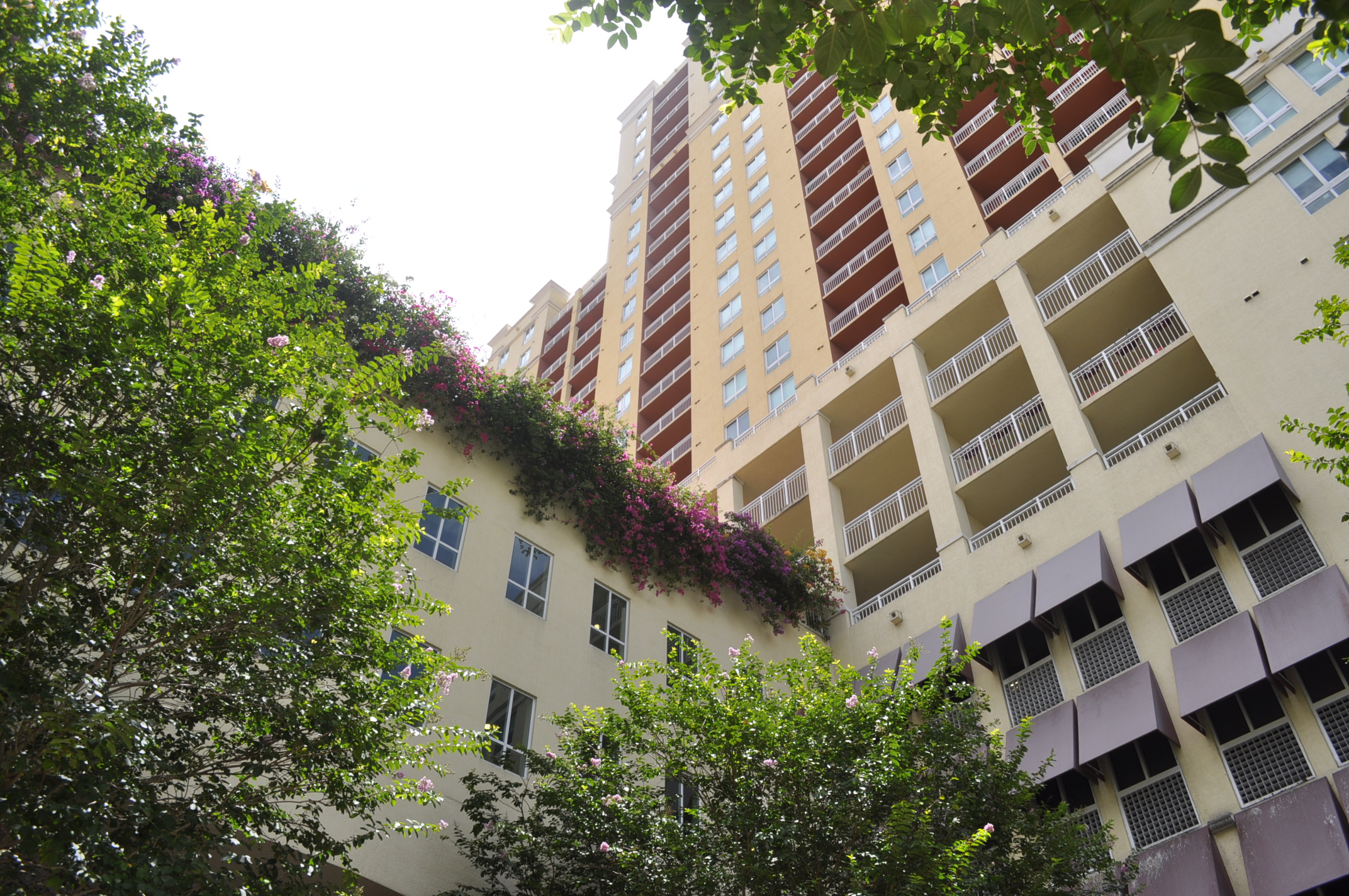 rentals property at 7350 Sw 89th St #1001S