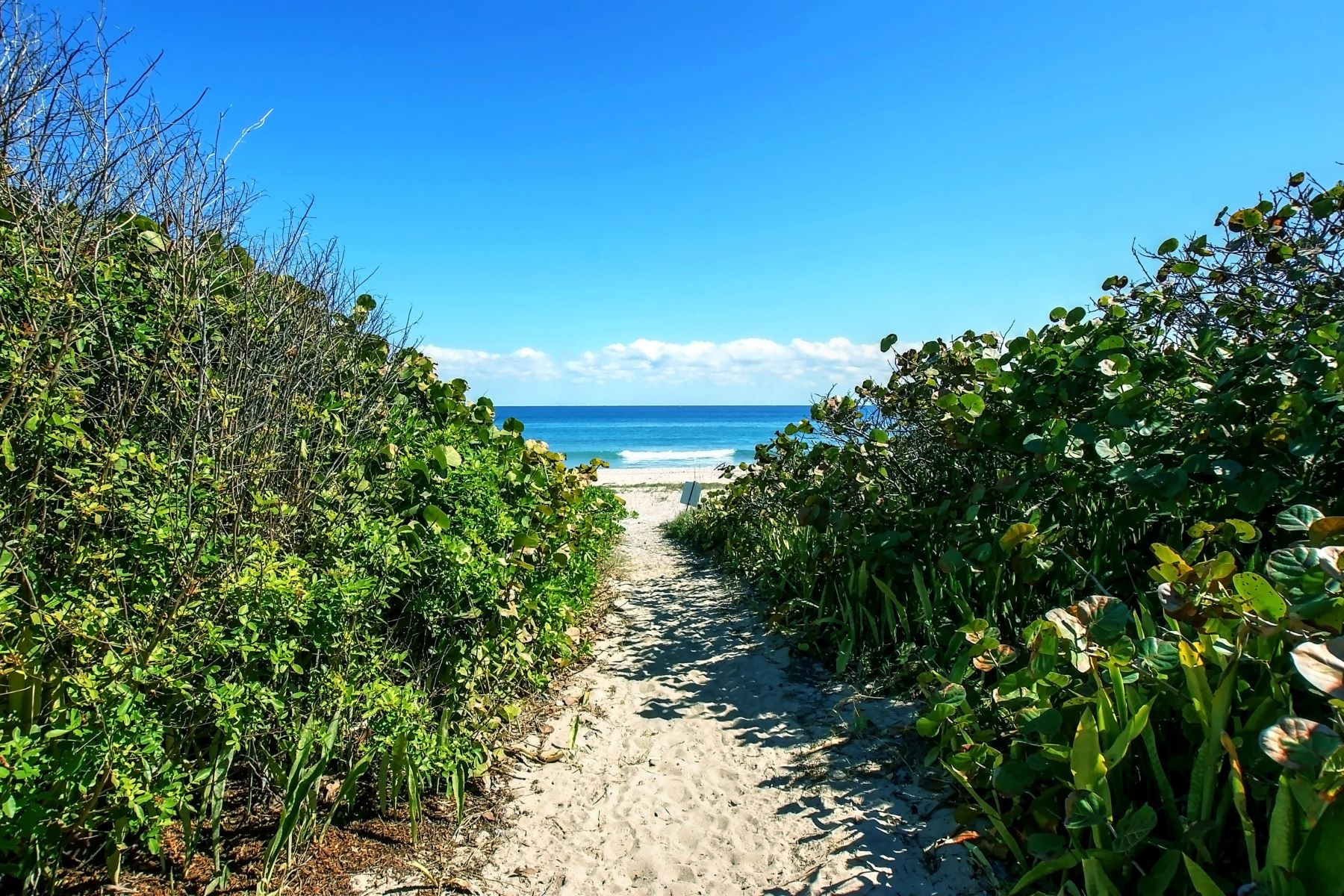 Land for Sale at 1103 Hillsboro Mile Hillsboro Beach, Florida, 33062 United States