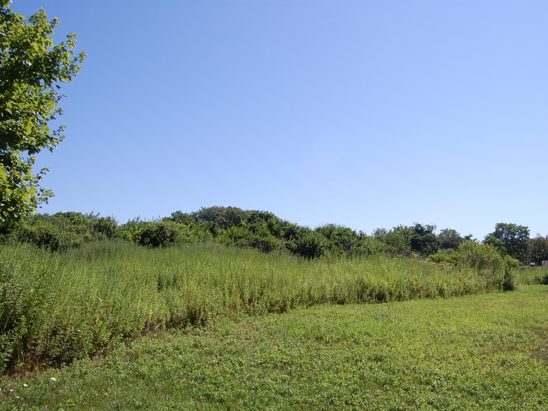 Land for Sale at Land 67925 County Rd 48 Greenport, New York, 11944 United States