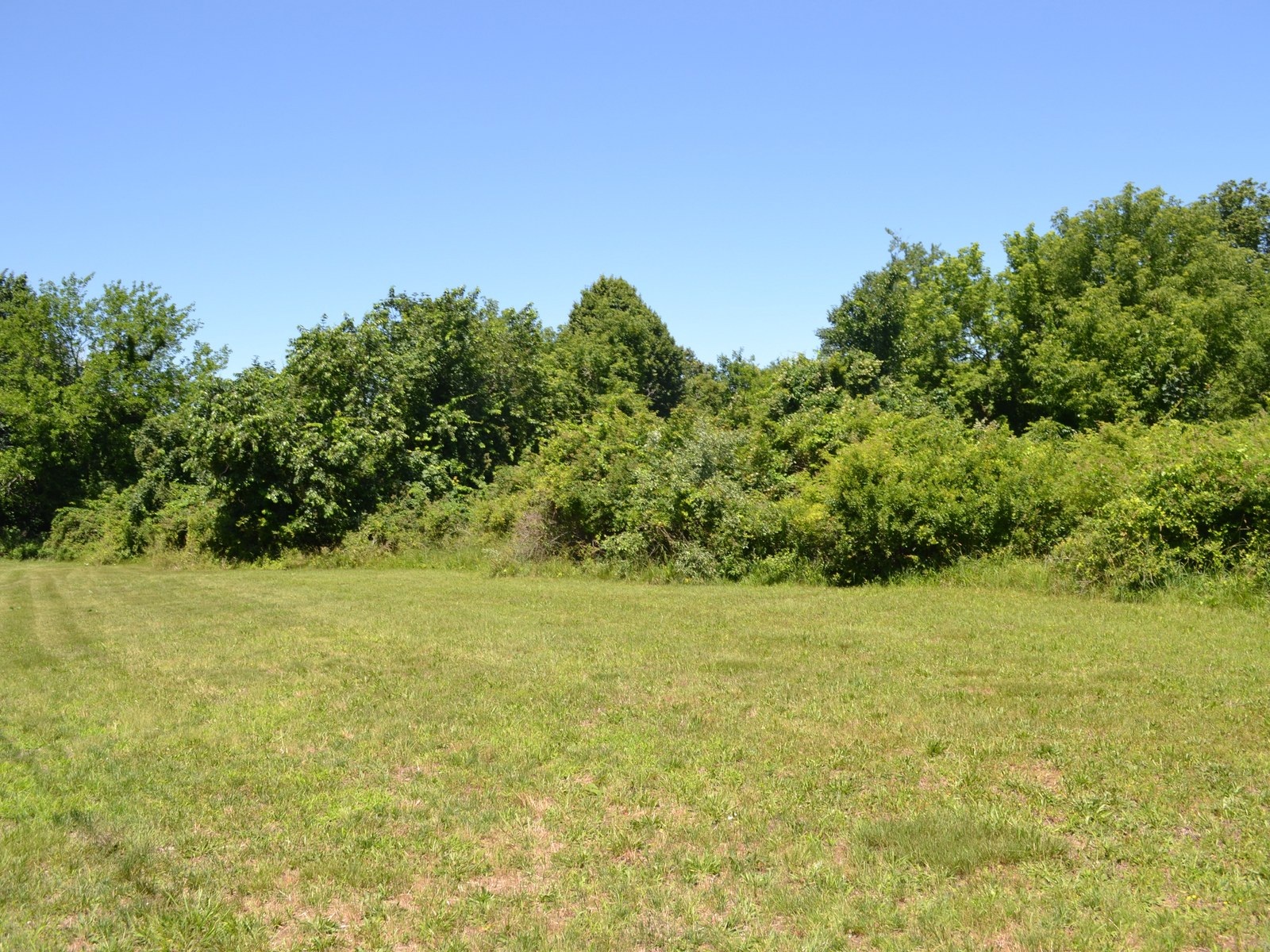Terreno por un Venta en Land 1080 Ackerly Pond Rd Southold, Nueva York, 11971 Estados Unidos